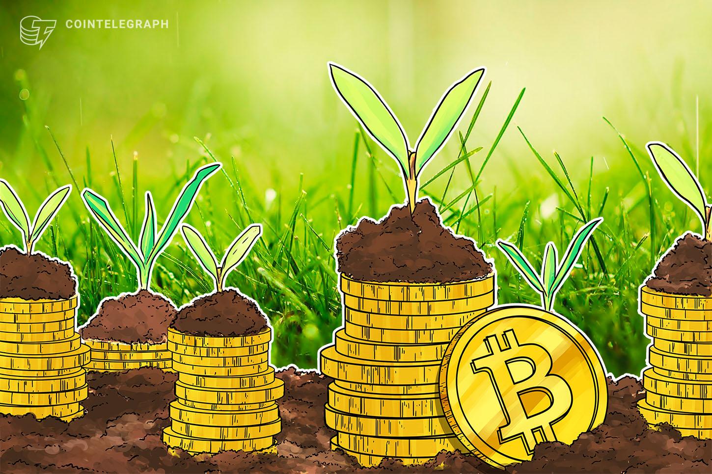 El alcalde de Miami llama a Bitcoin una 'inversión estable' durante un año inestable