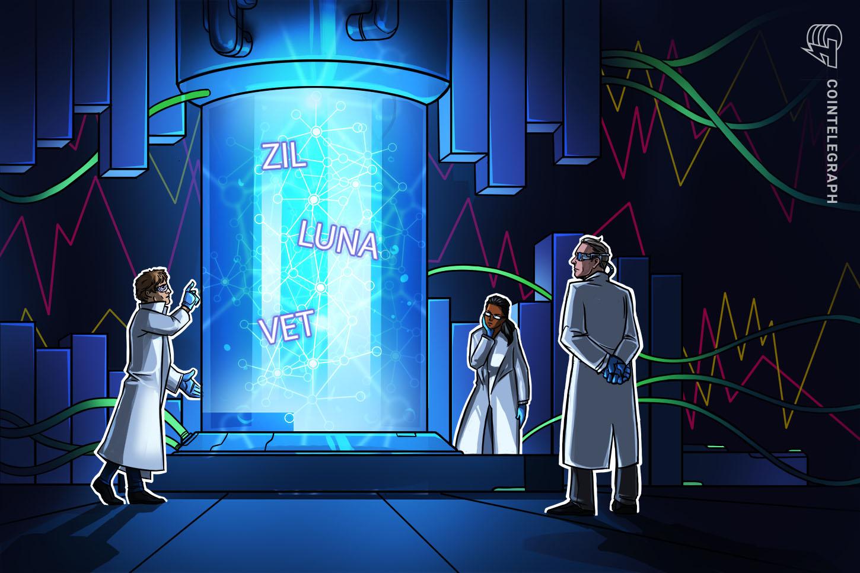 Zilliqa, Terra (LUNA) y VeChain recuperan buenas noticias y sólidos fundamentos