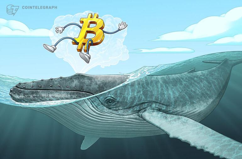 Otro depósito de 84 millones de dólares plantea la pregunta: ¿Por qué se venden las ballenas Bitcoin en Corea?