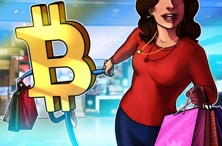 Los comerciantes minoristas, no los hotshots como MicroStrategy, hicieron Bitcoin en 2020