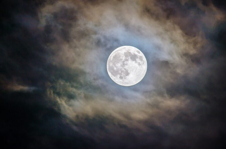 Elon Musk's Doge Moon