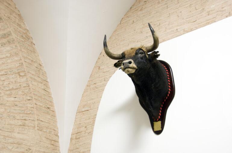 bitcoin ethereum bulls bullish bull