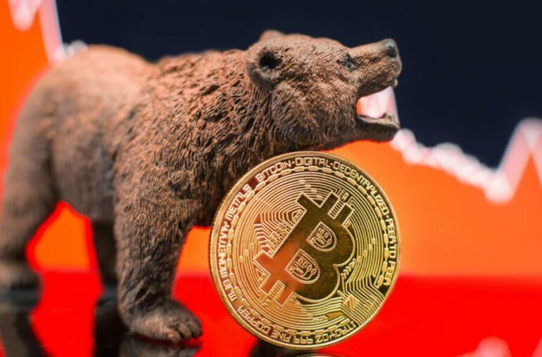 ¿Cuál es el estado del mercado alcista de Bitcoin?